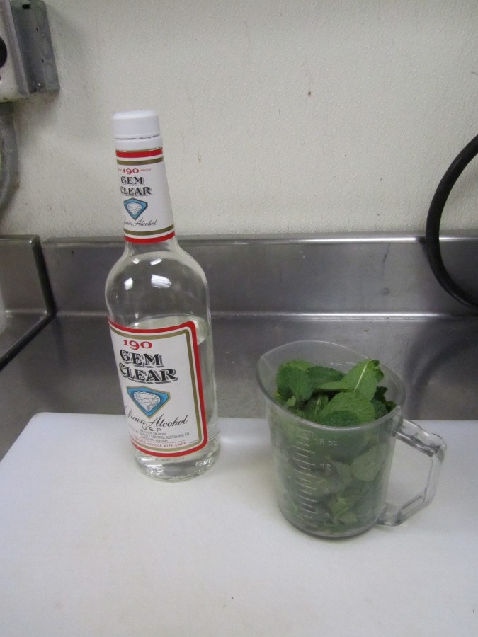 Step 1: 1 bottle of Gem Clear 190 and 2 cups of fresh mint leaves (no stems)